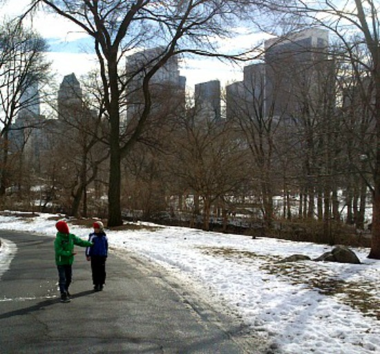 Getting around Central park on all the snow cleared paths