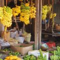Sri Lankan fruits, the fruit market at Galle Sri Lanka