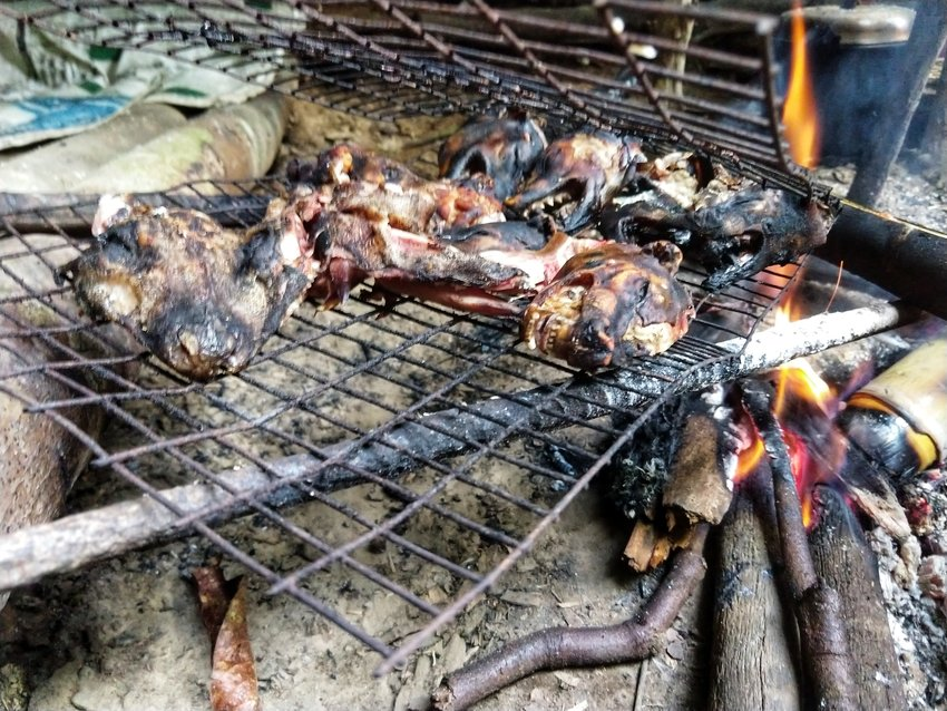 Weird foods roasted civet cat